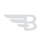 BitAngels logo