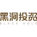 Black Hole Capital Ltd logo