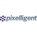 Pixelligent Technologies LLC logo