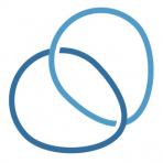 Salveo Capital logo