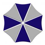 VO1T logo
