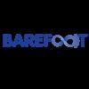 Barefoot Networks Inc logo