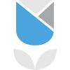 Blossom Street Ventures logo