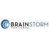 Brainstorm Ventures International LLC logo