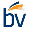 BV Investment Partners LLC logo