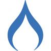 Deep Fork Capital logo