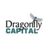Dragonfly Capital Partners LLC logo