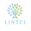 Lintel Financial Services Ltd logo