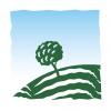 Maxfield Capital logo