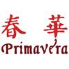 Primavera Capital Group logo