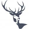 Whitehart Ventures logo